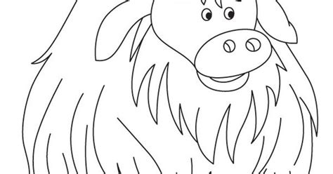 free coloring pages yak http bestcoloringpages com userimages cp yak coloring