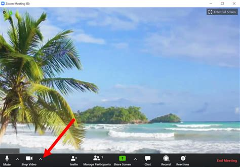 funniest virtual backgrounds  zoom