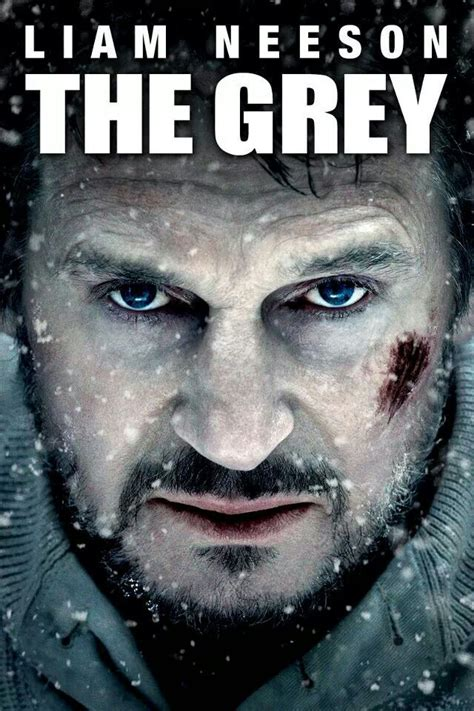 film terbaik liam neeson 121 best images about liam neeson on pinterest ralph