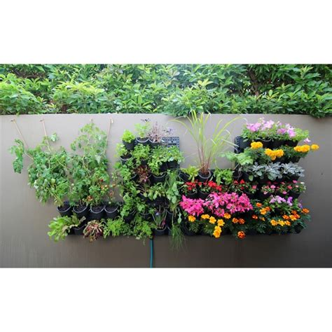 holman greenwall vertical garden kit bunnings warehouse