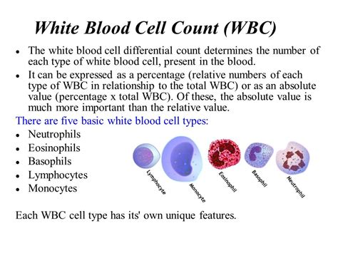 what is the value of each type of the following resistor colour coded complete blood count cbc ppt