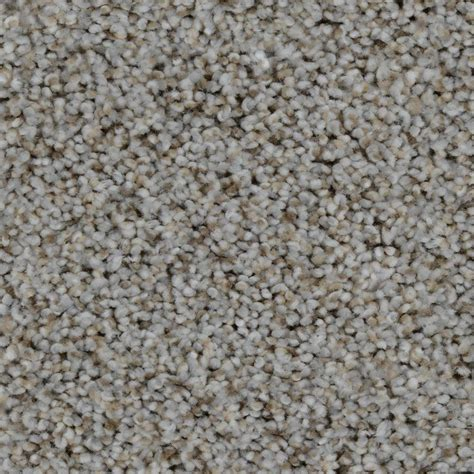 home decorators collection carpet reviews