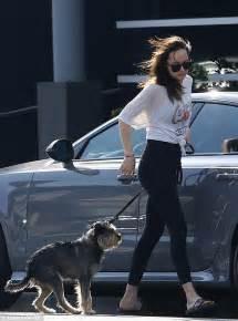 hollywood actress dakota johnson dakota johnson cuts stylish figure in jeans in hollywood