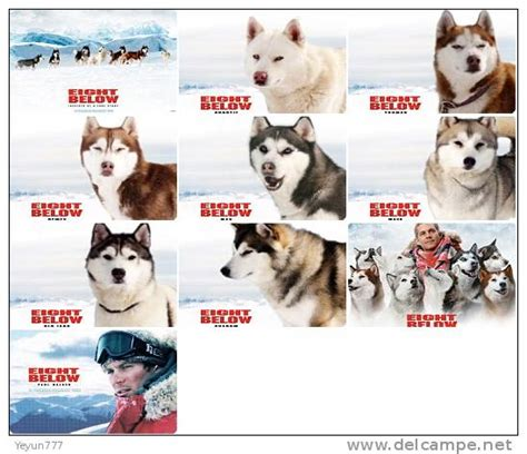 dogs name in story view topic the baced on a true story new
