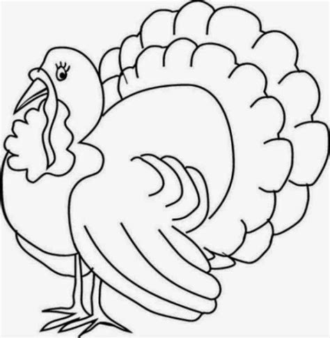 turkey pictures to color colours drawing wallpaper printable thanksgiving coloring