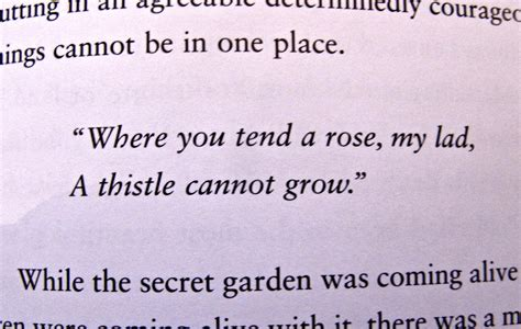 quotes from the secret garden quotesgram
