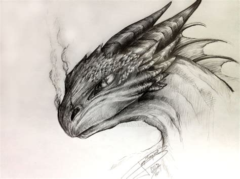 Drawing Dragons by Drawing Of A Www Imgkid The Image Kid Has It