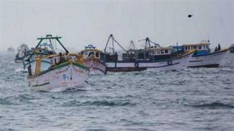 cost of fishing boat in chennai tamil nadu annual ban on seafood cost to shoot up
