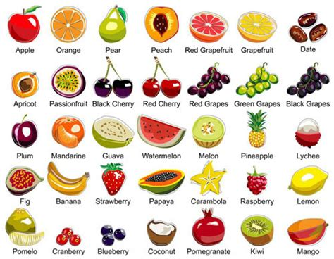 fruit vegetables list reading practice what happens to your when