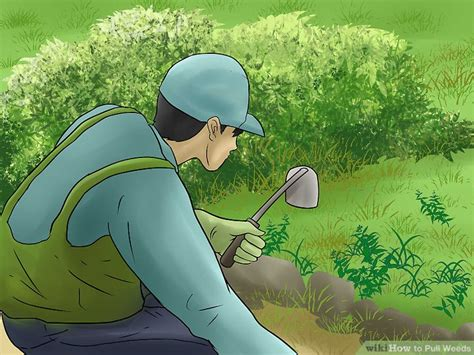 pull weeds  pictures wikihow