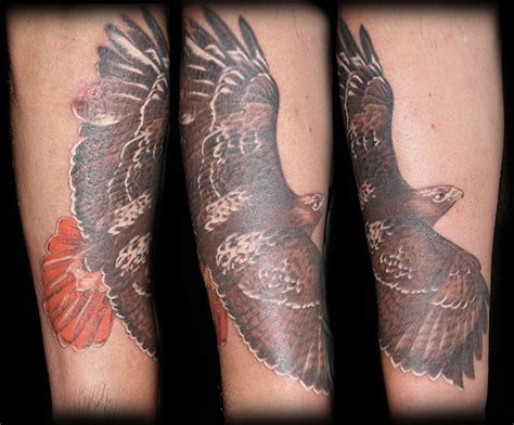 hawk feather tattoo designs hawk feather designs