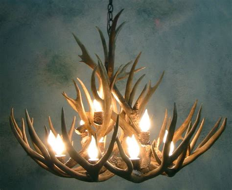 Deer Antler Chandelier For Sale Moose Antler Chandelier For Sale Home Design Ideas