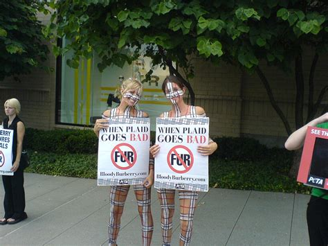 Peta Burberry by Peta Protests Burberry In White Plains Ny Wikinews The