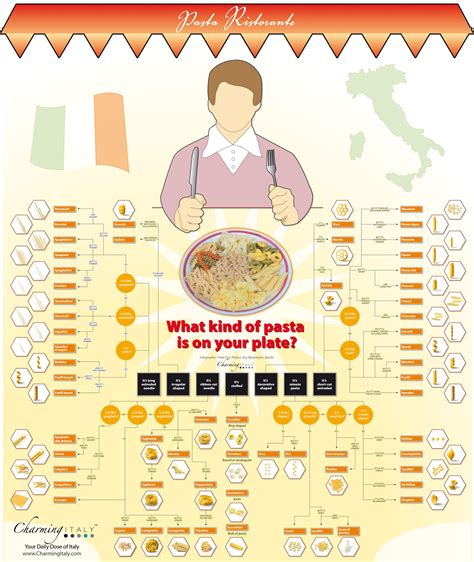 different types of the different types of pasta what is on my plate