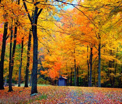 US Fall Color Scenic Drive Guide   compare.com