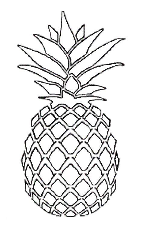 pineapple coloring page pineapple drawing sketch coloring page