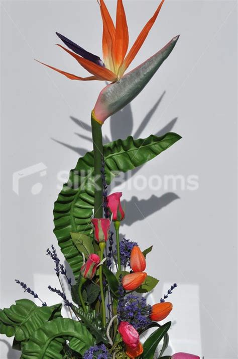 Bird Of Paradise Flower Arrangement Vase by Shop Colourful Tulips Birds Of Paradise Floral