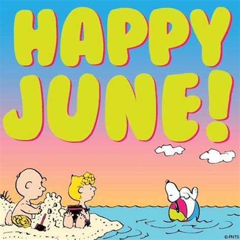 the days of june the story of june nicholson classic reprint books happy june pictures photos and images for