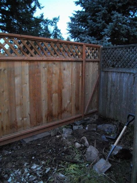 fill  awkward gap   fence  backyard