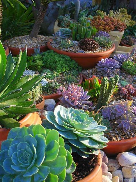 8 Cool Gardening Blogs by 1000 Images About Balcony Container Gardening On