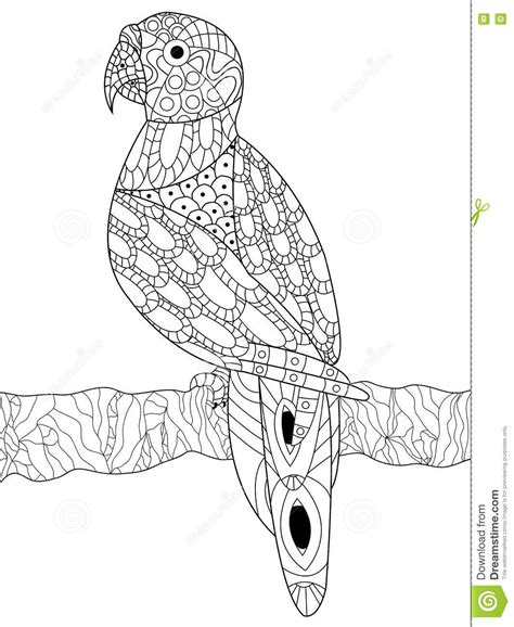 z coloring book for and adults 40 illustrations books zentangle macaw ara and cockatoo vector