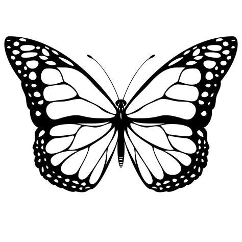 mariposa monarca para colorear imagui