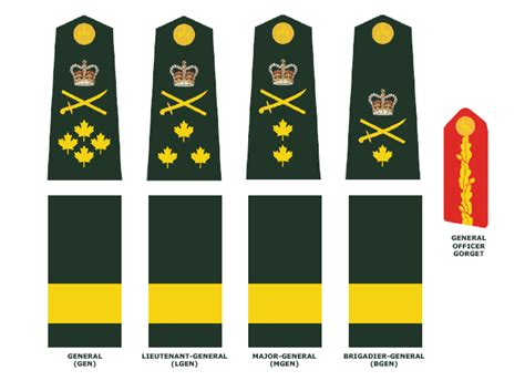 canadian military rank structure for the air force navy and army canadian army national defence canadian armed forces