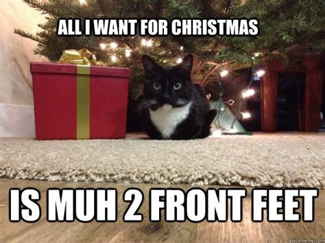 All I Want For Christmas Meme - all i want for christmas memes