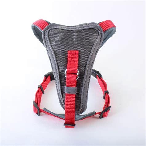 doodlebug harness doodlebone x harness