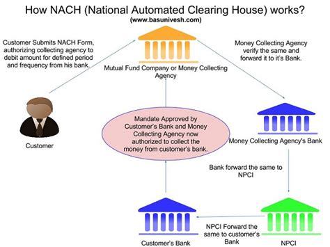 clearing house all about nach national automated clearing house basunivesh