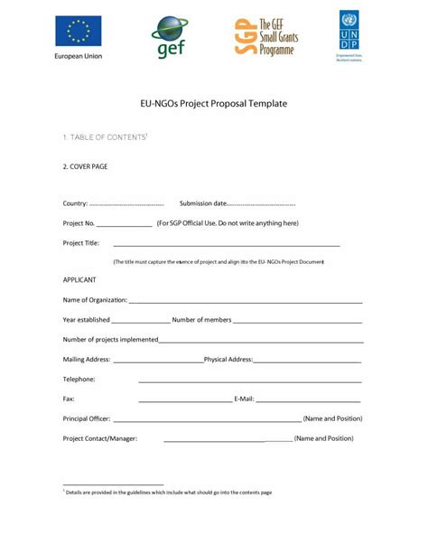 Professional Project Template 43 Professional Project Templates Template Lab