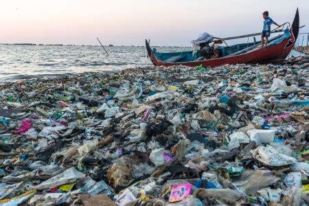 lebih banyak ikan di laut atau bintang di langit kisah menko luhut lebih banyak plastik di laut dari pada ikan