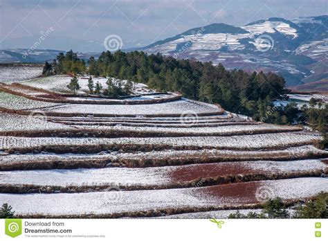 red land dongchuan yunnan red land snowy field in the score