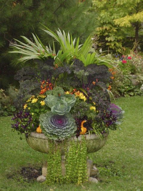 fall plants container gardening pinterest 25 best ideas about fall container gardening on pinterest