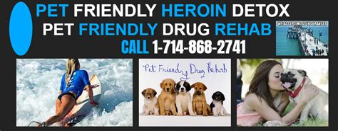 Brain Detox For Dogs by Pet Friendly Detox Fullerton California