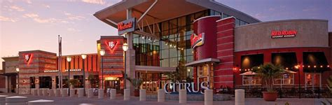 waldenbooks citrus park mall the best malls in ta bay
