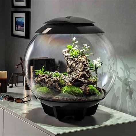 biorbair terrarium  led light noveltystreet