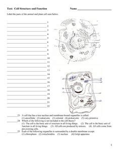 Chapter 23 Plant Structure And Function Worksheet Answers diagram label eye lesson the human diagram free engine