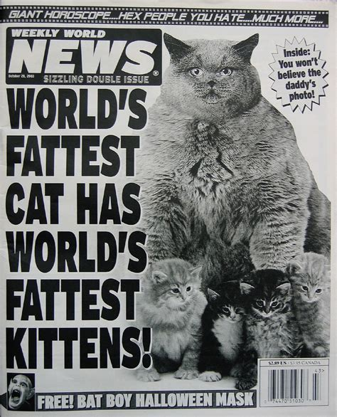 world news weekly world news 001 headlines and humor