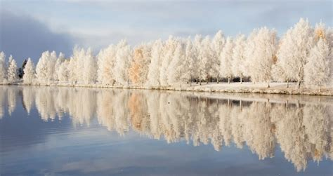 rovaniemi wallpaper this morning in rovaniemi lapland finland photo by