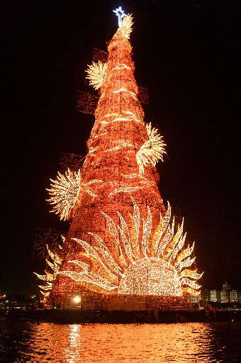 trees of lights in brazil travel top 10 world s landmark trees eat drink play