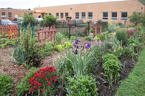 picture of garden granny s garden school loveland ohio