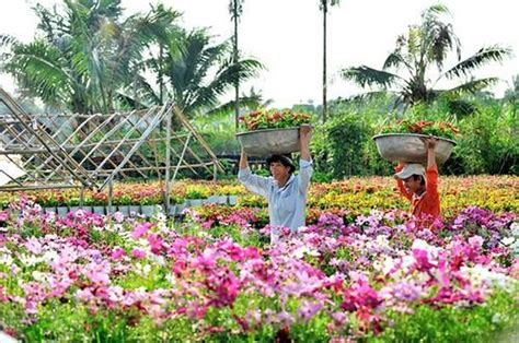 Dong Garden by Of Dong Thap Agenda Tour