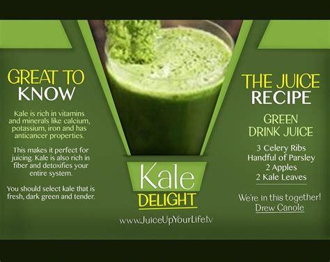 Celery Detox Juice Recipe by Kale Delight Recipe Start Your Juicing Journey Http