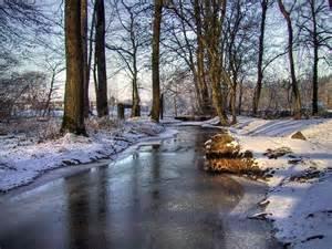 belles images de paysages hiver