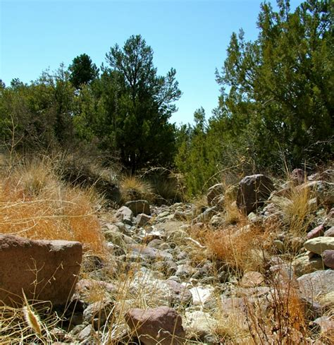 dry creek beds dry creek beds borrowing inspiration from nature