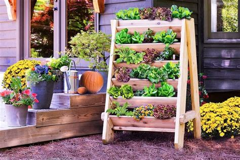 Planting Ideas For Small Gardens 16 Genius Vertical Gardening Ideas For Small Gardens Balcony Garden Web