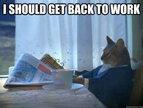 Working Cat Meme - morning realization newspaper cat meme memes quickmeme