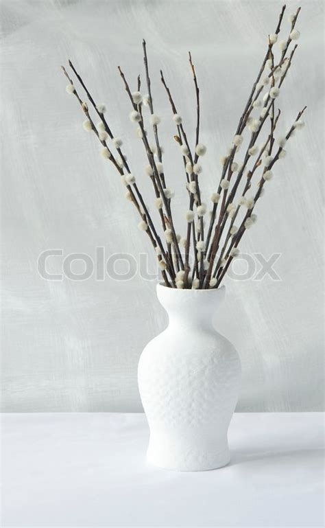 willow branches in a white clay vase stock photo colourbox