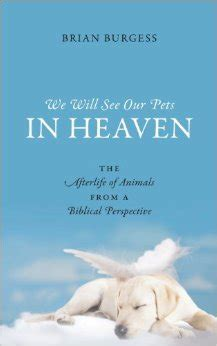 pets in heaven gift for owners bible quotes about perspective quotesgram